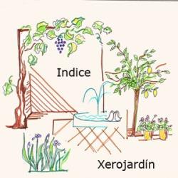 Indice X