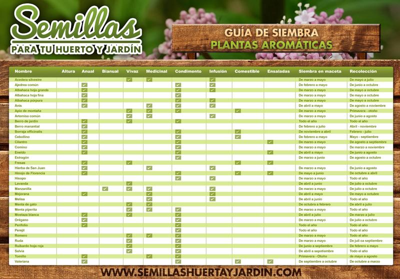 SIEMBRA PLANTAS AROMATICAS (1)
